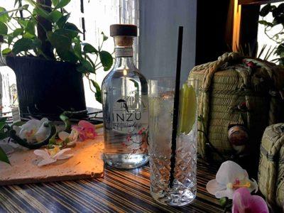 Gin kan også drikkes rent