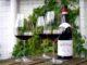 Det rigtige vinglas til den rigtige vin